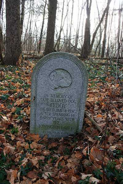 abandoned pet cemetery in Ontario